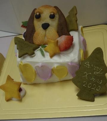 去年のクリスマスケーキ。12月生まれのノエルは誕生日兼用で豪華なケーキを食べました。